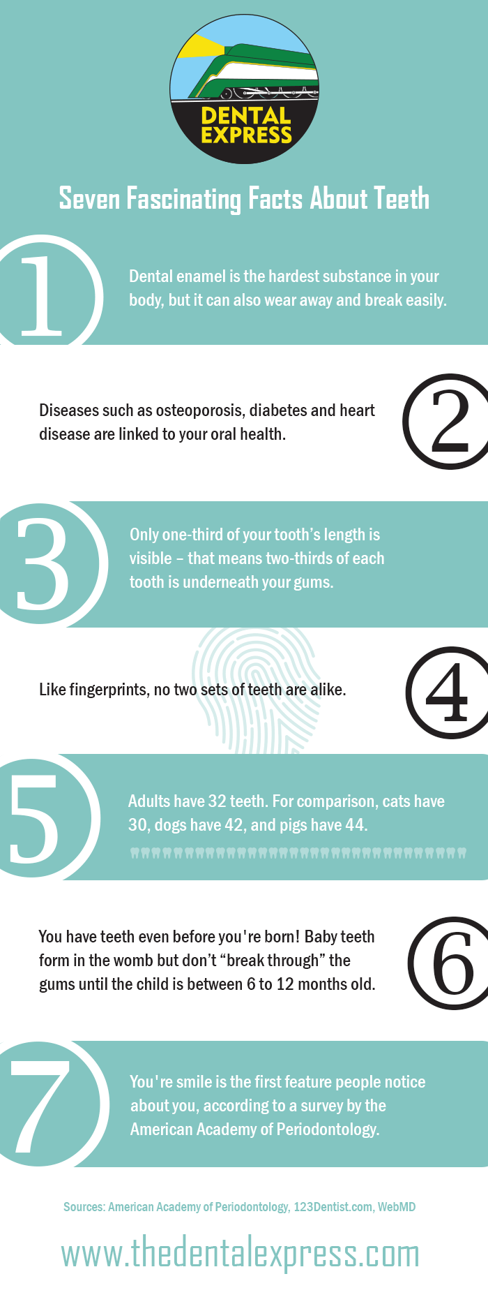 Seven Fascination Facts About Teeth