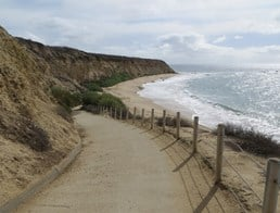 Image of Crystal Cove State Park
